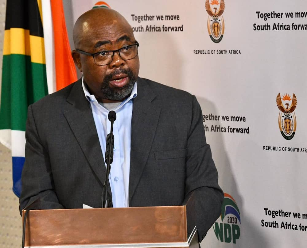 Thulas Nxesi Minister of Employment and Labour