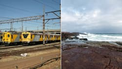 Loco thieves take train on 12km joyride along the South Coast
