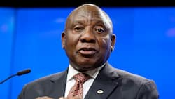 President Cyril Ramaphosa says 700k jobs have been created during the pandemic