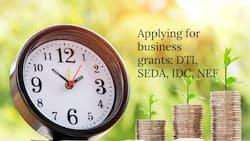 Everything you need to know before taking the DTI, SEDA, IDC, and NEF funding