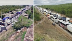 Beitbridge border queue reaches Musina: Little hope for travellers