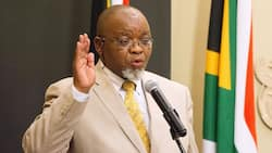 Gwede Mantashe says ANC needs to defeat corruption before it's destroyed