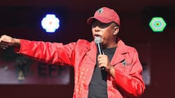 Malema says under EFF rule Sassa recipients won't pay water and electricity bills, people in the suburbs will