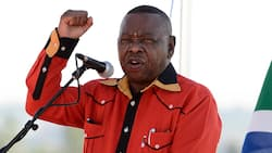 SACP's Blade Nzimande says South Africa needs a state owned bank, suggests African Bank