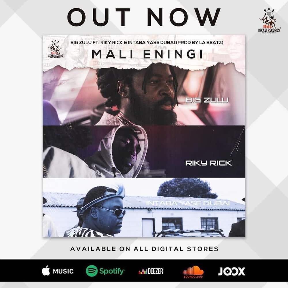 Big Zulu Imali Eningi Official Video Lyrics Reactions Download