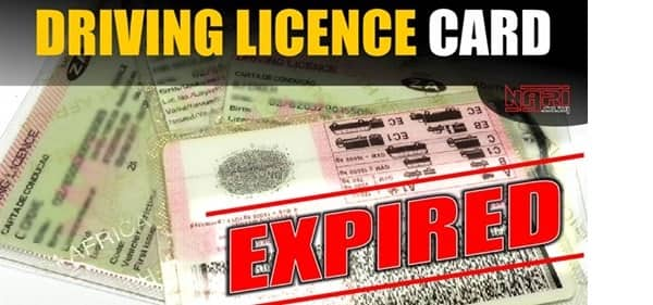 Renewing drivers license: How to renew your license in South Africa