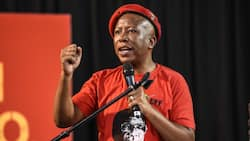 Malema accuses Covid-19 advisory committee scientists of hypocrisy