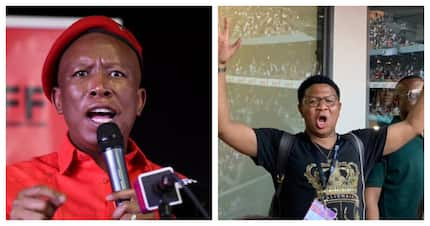 Malema disappointed, Beyonce had Mbalula fainting - Global Citizen Festival