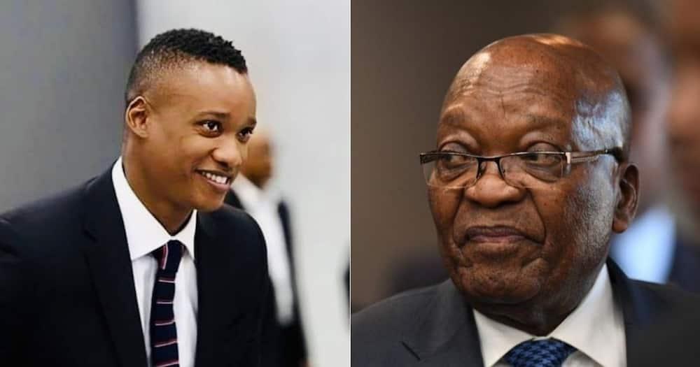 Duduzane Zuma, Backlash, Social Media, Video, Father's Arrest
