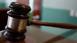 NPA and Hawks to investigate and prosecute Apartheid-era crimes