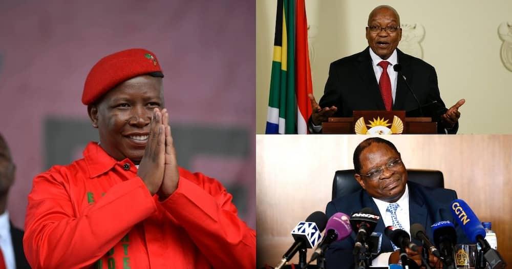 Malema Says Zondo Must Divulge Info from Secret Meeting with Zuma