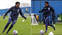 Brighton & Hove's Percy Tau leaves Mzansi delighted with killer pass