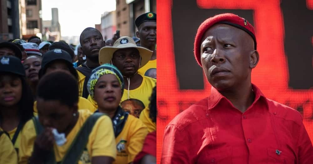 ANC supporters, EFF, Julius Malema, block, registration