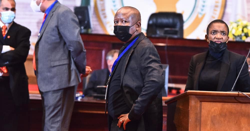 """""""Malema, Shame"""": CIC Shoved Violently at Pan African Parliament, Does Not Retaliate"""