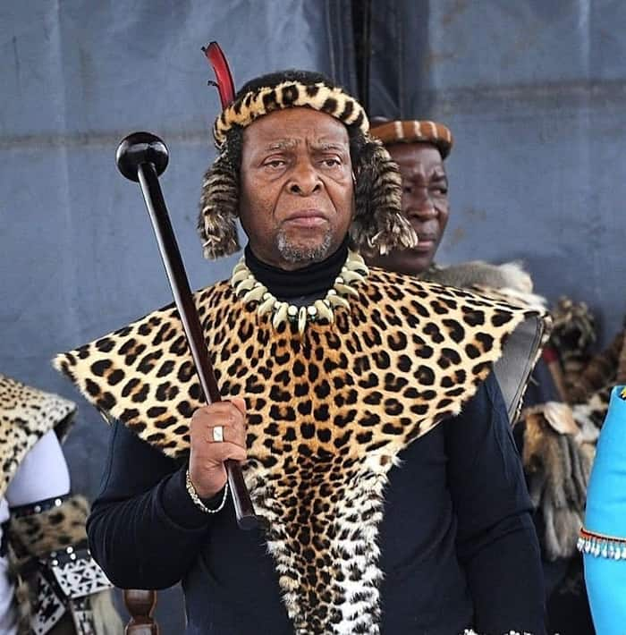 List of King Zwelithini wives and children (with images)