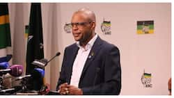 Pule Mabe lashed out at ANC youth league structures over Jacob Zuma