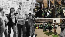 History post: Meet the four women who led the 1956 march against SA's pass laws