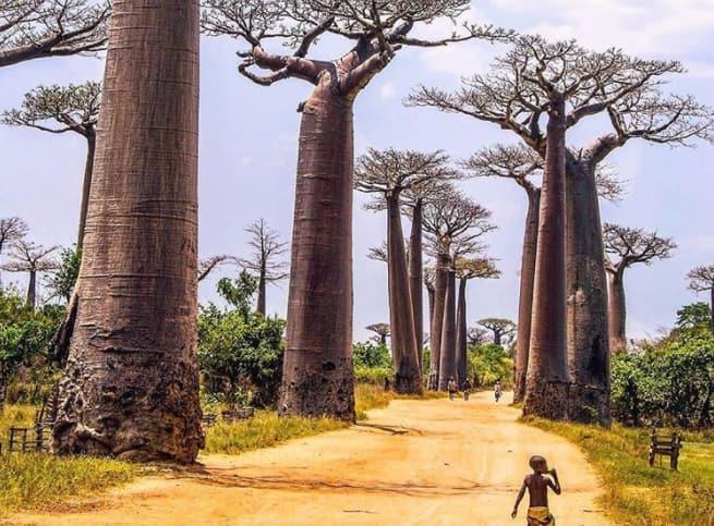 nnatural wonders of Africa
