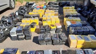 541kg of Cocaine with estimated value of R243m found in KZN depot