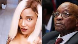 Dudu Zuma-Sambudla advocates for dad Jacob, post inspires close to 1k comments