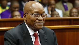 Jacob Zuma's supporters say he can't go out for lunch at a casino 'without sphithiphithi'