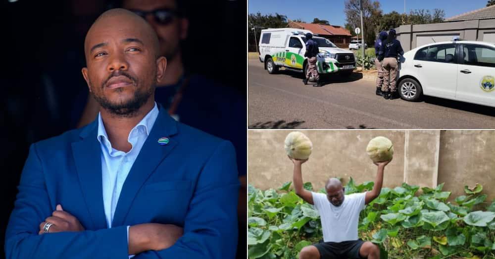 Mmusi Maimane , Djo BaNkuna, Police, Calls out, Bullying, Planting Vegetables, Sidewalk, Twitter reactions