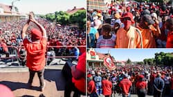 Julius Malema gives EFF in Senekal orders: 'March into town'