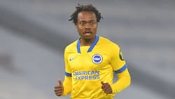 Lucas Radebe says Percy Tau needs to stay at Brighton & Hove Albion