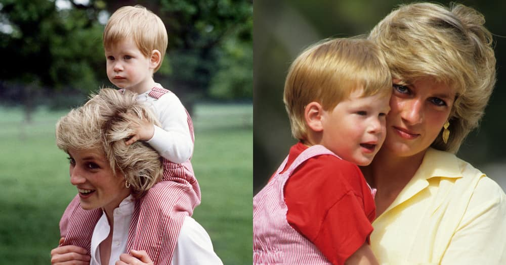 Royal Expert Says Princess Diana Would Be Proud of Son Prince Harry