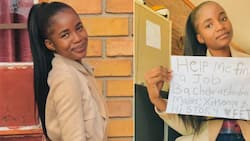 """""""Help me find a job"""": Bachelor of Education graduate appeals to Mzansi for assistance"""