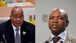 """Mahumapelo defends Zuma """"we don't care about the consequences"""""""