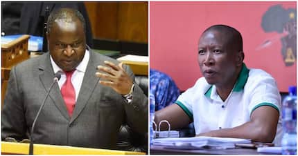 Tito Mboweni's defence of Malema's family privacy divides Twitter