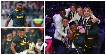 Aphiwe Dyantyi named World Rugby Breakthrough Player of the Year