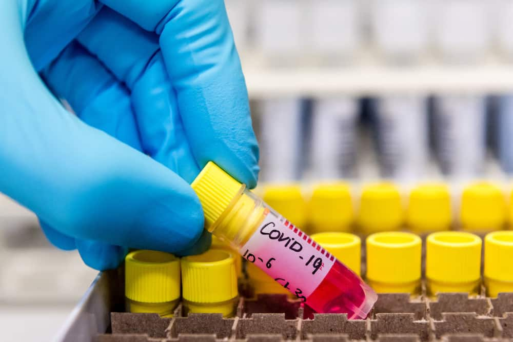 COVID-19 cases increase with almost 2000 new cases in Mzansi
