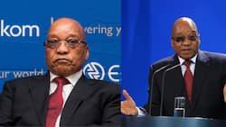 Jacob Zuma rejects recommendation that he undergo NPA medical exam