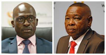 Nzimande to be acting home affairs minister after Gigaba's resignation