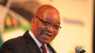 Jacob Zuma spotted at casino while on medical parole, was allegedly there for a meeting