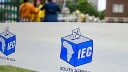 Push for postponement of by-elections at electoral court, IEC announces