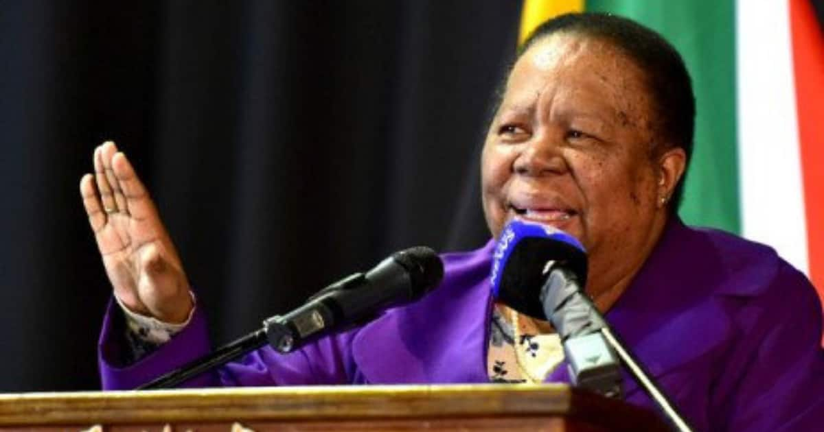 Pandor on xenophobia: SA shouldn't isolate itself from African nations