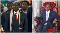 Robert Mugabe warned that people would be after his body parts