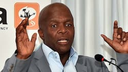 Mzansi believes R11 billion allocated for employment stimulus will disappear
