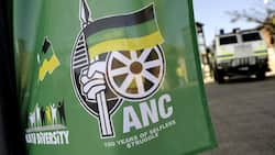 ANC leaders believe traitors from within the party behind Mkhize's death