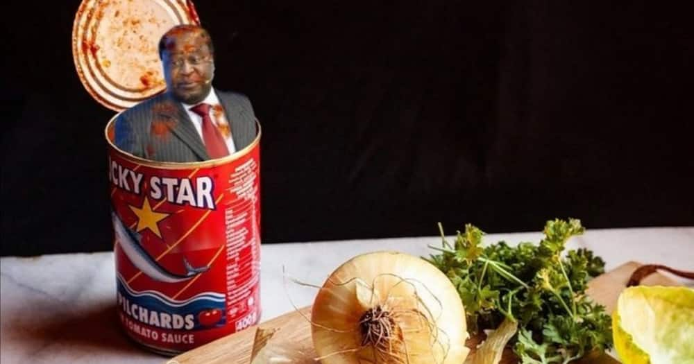 Tito Mboweni Gets Another Good Roasting After Posting His Chickens