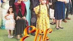 Check out the latest Elif teasers for March 2021 here!