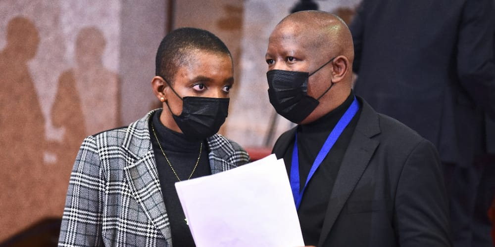 MP defends herself & Julius Malema with sanitiser, at Parliament meeting, Mzansi loves it
