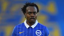 Mzansi social media users unfollow Brighton as Percy Tau joins Al Ahly