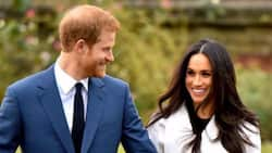 Prince Harry, Meghan Markle share 'heartbroken' message on state of the world
