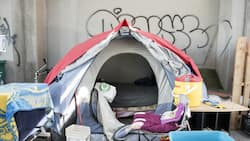 Cape Town mulls plan to fine homeless people who refuse shelter
