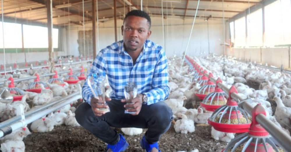 Farmer encourages aspiring farm owners to stop making excuses