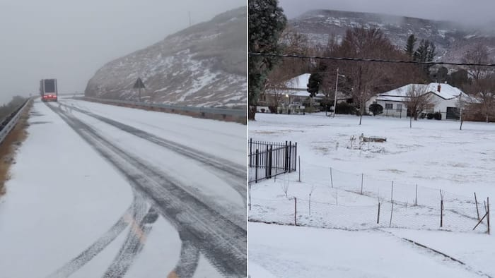 Freeze frame: South Africans react to photos of heavy snowfall in the Eastern Cape
